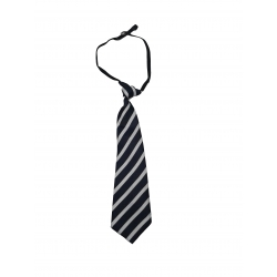 Regular Uniform  Tie